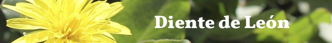 cibi da evitare per acido urico alto acido urico en que alimentos se encuentra cantidad de acido urico en alimentos